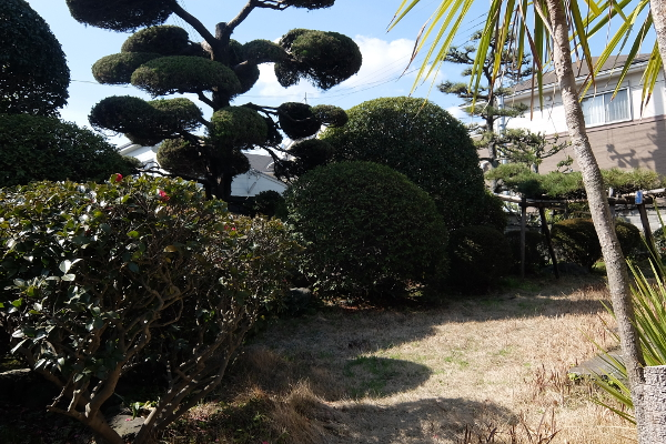 マルイケカフェ庭 (1)s